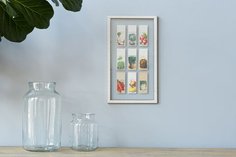9 Piece Framed Seed Pack
