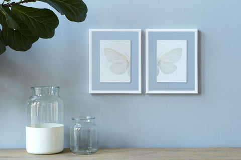 White Stockholm Butterfly Duo