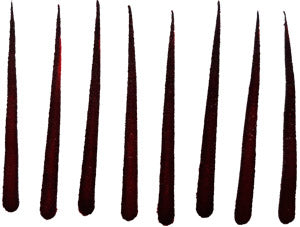 Extra Long Thin Maroon Bindi Naamam