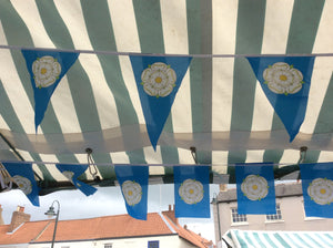 Triangular Bunting 5 meters