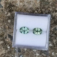 Green Sapphire Pair 1.70cts Total Weight