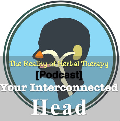[Podcast] Your Interconnected Head