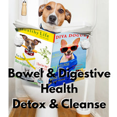 Bowel, Urinary, and Digestive Health