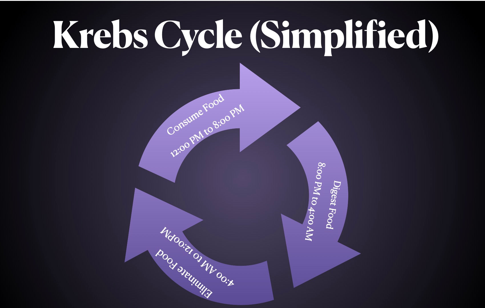 Krebs Cycle for digestion simplified.