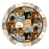 Thirstystone 4-pc. Kitten Collage Coaster Set - Chickadee Solutions
