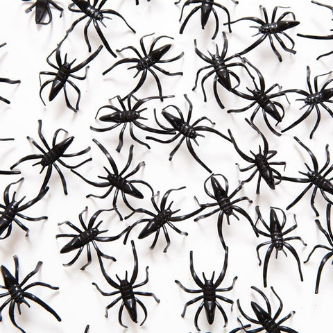 "1 1/2"" Plastic Spiders 72 Pack - Chickadee Solutions"