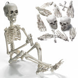 "Prextex 19""Posable Halloween Skeleton- Full Body Halloween Skeleton with Mova... - Chickadee Solutions - 1"