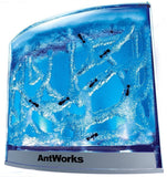 Fascinations AntWorks Illuminated Blue - Chickadee Solutions