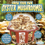 Dunecraft Grow Your Own Mushrooms Domed Terrarium - Chickadee Solutions - 1