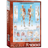 EuroGraphics Human Body Puzzle (1000-Piece) - Chickadee Solutions - 1