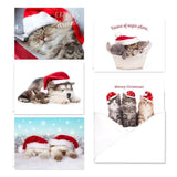 Christmas Cats Holiday Card Assortment Pack - Set of 25 cards - 5 of each des... - Chickadee Solutions - 1