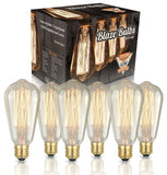 Edison Vintage Bulbs - 6 pack - 60W Incandescent - Clear Glass - ST64 Squirre... - Chickadee Solutions - 1