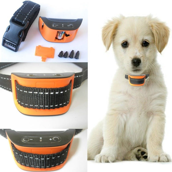 What Is The Best No Bark Collar For Small Dogs