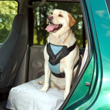 Bergan Dog Auto Harness with Tether l - Chickadee Solutions - 1
