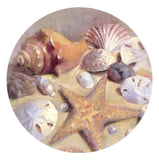 Thirstystone Stoneware Coaster Set Sea Shells - Chickadee Solutions
