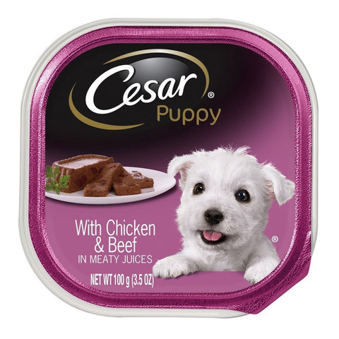 CESAR Puppy Wet Dog Food Chicken & Beef 3.5 oz. (Pack of 24) - Chickadee Solutions - 1