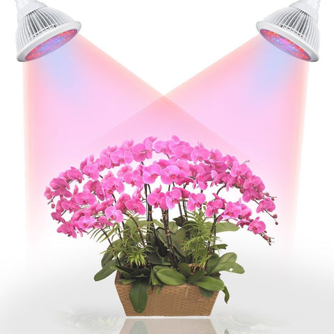 LED Grow/Plant Light Bulb for Indoor Seedlings Hydropoics Gardening Organic(E... - Chickadee Solutions - 1