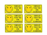 Sutter Signs Smile You're On Camera Security Stickers Indoor & Outdoor 4-inch... - Chickadee Solutions - 1