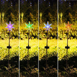 Fashionlite Solar Powered Stake Lawn LED Light Six Point Star Outdoor/Garden/... - Chickadee Solutions - 1