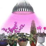 Eagwell Plant Grow Lights Miracle Grow Plant Light for Hydropoics Greenhouse... - Chickadee Solutions - 1