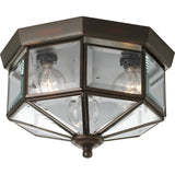 Progress Lighting P5788-20 Octagonal Close-To-Ceiling Fixture with Clear Boun... - Chickadee Solutions