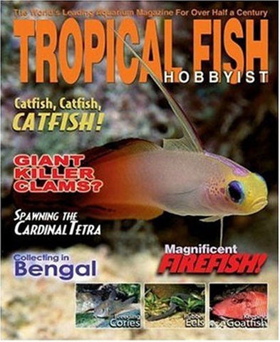 Tropical fish hobbyist chickadee solutions for Tropical fish hobbyist