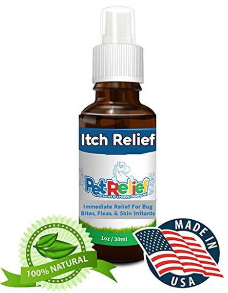 Amazon Best Sellers: Best Dog Itch Remedies