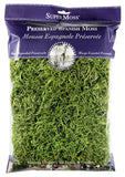 SuperMoss (26912) Spanish Moss Preserved Grass 8oz (200 Cubic Inch) Grass Green - Chickadee Solutions - 1