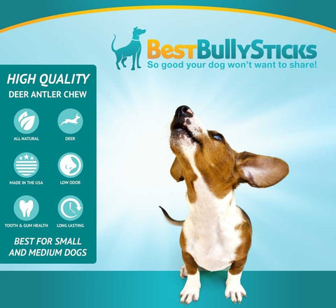 usa natural antler dog chews by best bully sticks deer antlers 1 pound chickadee solutions. Black Bedroom Furniture Sets. Home Design Ideas