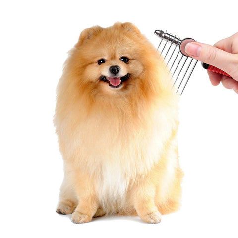 Dog Comb Sysrion Pet Grooming Comb Tool
