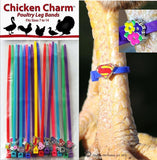 20 Chicken Charm Poultry Leg Bands - Fit Sizes 7 to 14 - Chickadee Solutions - 1