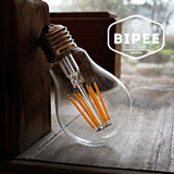 A19 LED Edison Style Bulb - 6W LED Vintage Filament Light Bulb 60W Equivalent... - Chickadee Solutions - 1