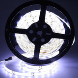 Eway SMD2835 Waterproof 12V Strip Light 300 Units 2835 LEDs 5 Meter (Pure Whi... - Chickadee Solutions - 1