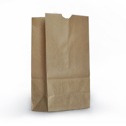 1 X Small Brown Paper Bags - 100 Pack - Chickadee Solutions - 1