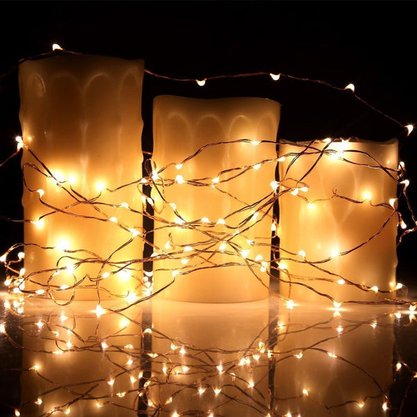 Kohree 120 Micro LED String Lights on 20 Feet Copper Wire Seasonal Decor Rope... Chickadee ...