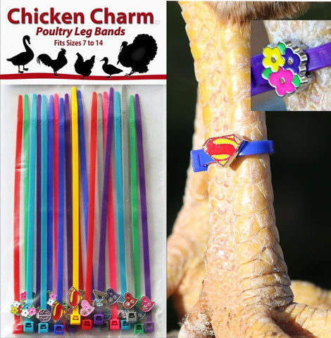 Chicken Charm Poultry Leg Bands - Fit Sizes 7 to 14 - Chickadee Solutions - 1
