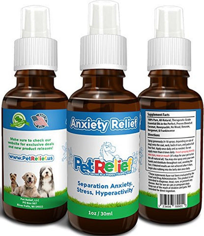 Best Natural Anti Anxiety For Dogs