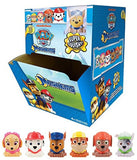 Tech4Kids Paw Patrol Mash'ems Display 1 Blind Capsule - Chickadee Solutions - 1