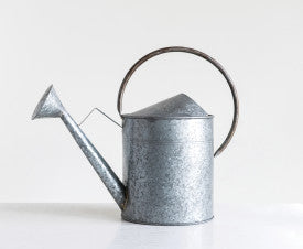 Silver Galvanized Metal Watering Can with Gold Handle