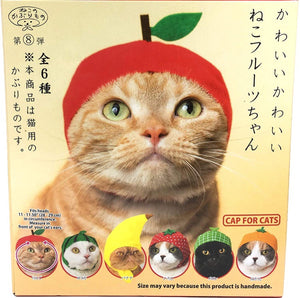 Cat Hat Fruit Series