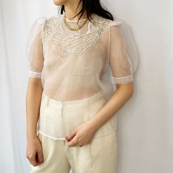 Vintage Organza Sheer Top