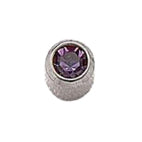February Stainless Steel Bezel Mini - Amethyst FD3041M - Rossan Distributors