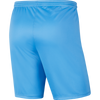 Youth Nike Dri-FIT Park III Shorts