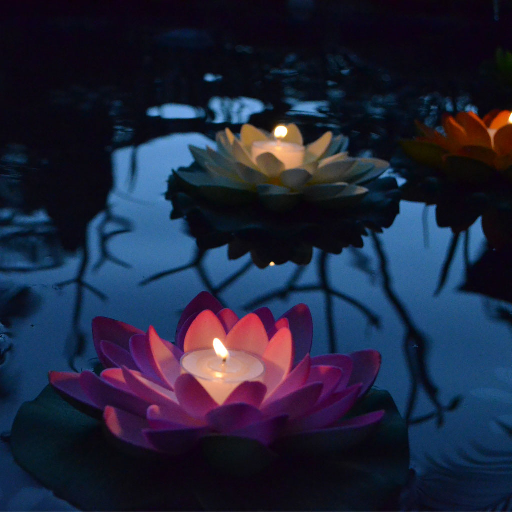 Floating Lotus Flower Candle Floating Lanterns Lanternshopcomau