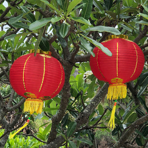 Small-Medium Chinese Lanterns (30cm) - pack 2 red nylon lanterns