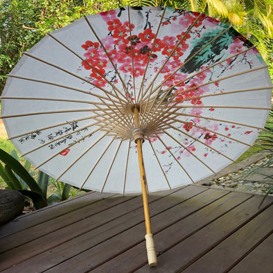 Chinese paper parasol - white cherry blossoms