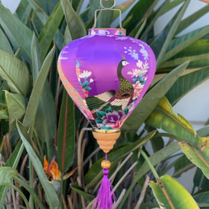 purple peacock silk lantern