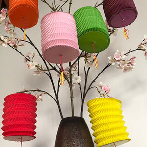 Small traditional Chinese lantern pack