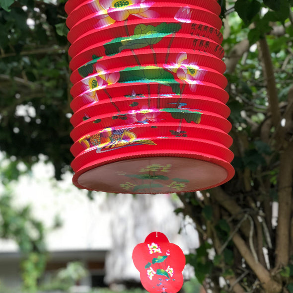 Massive Oriental Design Printed 6 Pack mixed corrugated paper lanterns