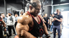 INSIDER INTERVIEW | IFBB PRO DAVID HENRY | GRIPPED TRIBE